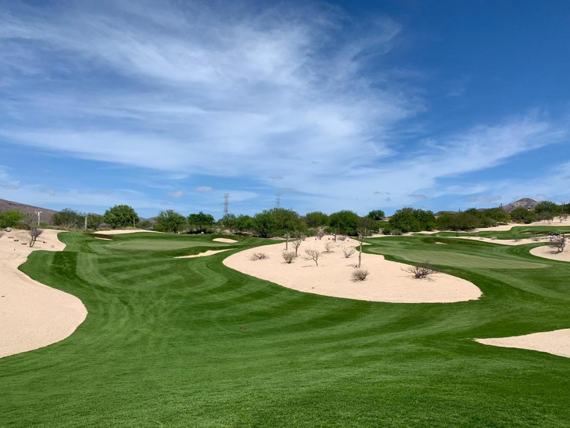 Golf Course Architect.